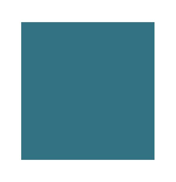 logo bleu Murs et Merveilles