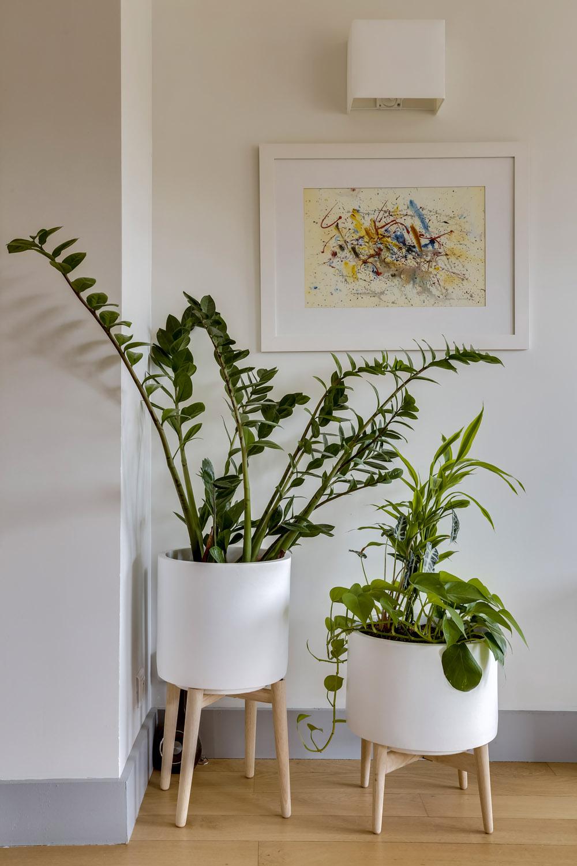 appartement neuilly ambiance scandinave plantes vertes murs et merveilles